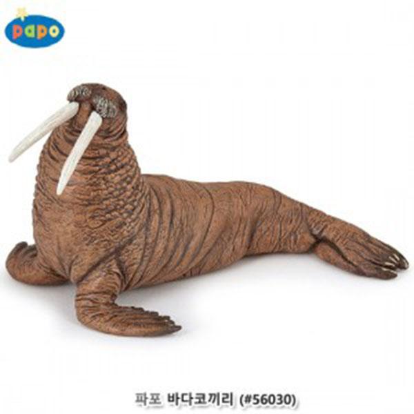 파포 (해양동물 모형완구) New 바다코끼리 (#56030)