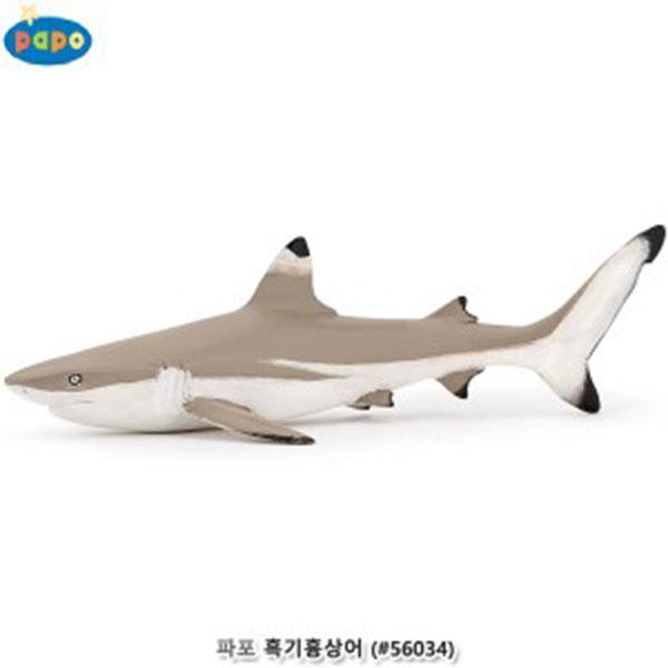 파포 (해양동물 모형완구) 흑기흉상어 (#56034)