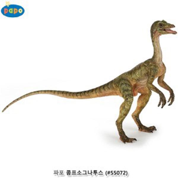 파포 (공룡 모형완구) 콤프소그나투스 (#55072)