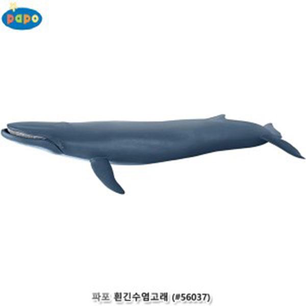 파포 해양동물 모형완구 흰긴수염고래 대왕고래 #56037