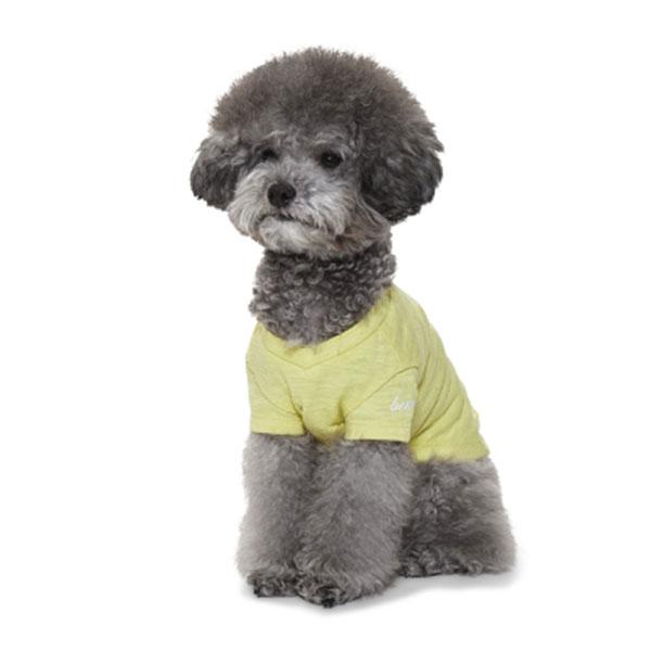 베니즈 포켓 브이넥 티셔츠 옐로우