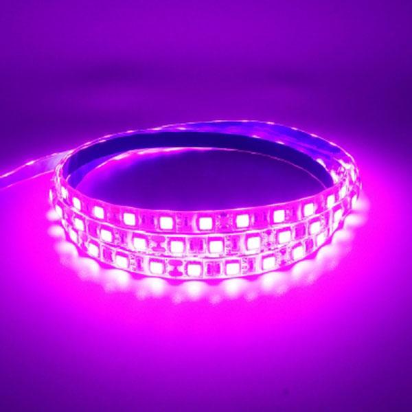 12V용 고급형 밝기향상 5050 3칩 LED바 핑크LED 5M 롤