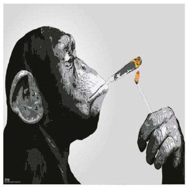 스티즈 원숭이 스모킹 GN0813