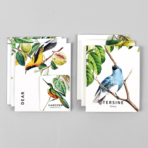 Card set-09 Bird