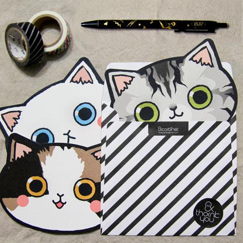 고양이 카드 세트