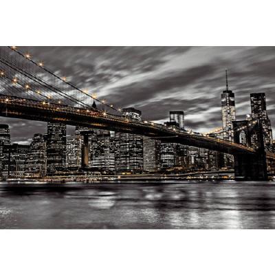 PH0496 뉴욕프리덤 나이트 2